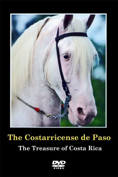 Costarricense De Paso – The Treasure of Costa Rica